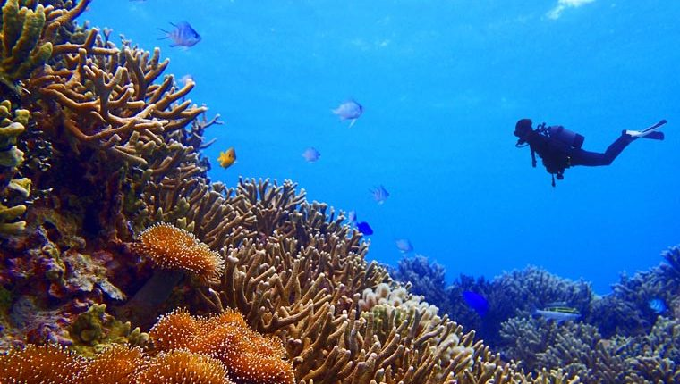 Underwater wonderlands: the best scuba diving sites in Asia
