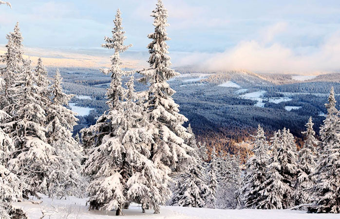 A sneak peek of Trysil, an expensive but worth it resort for skiing in Norway